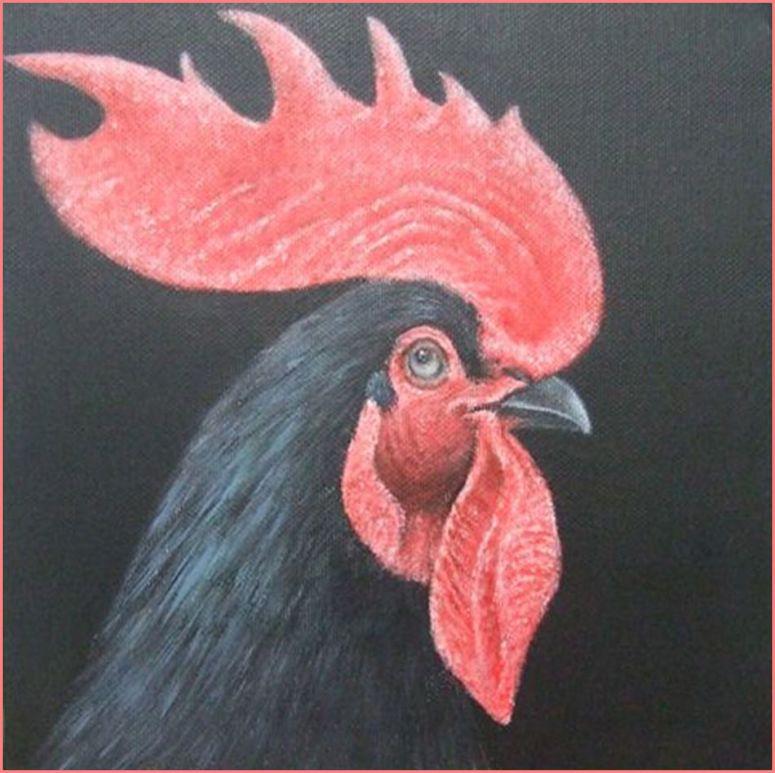 Coq noir 20x20 (1)