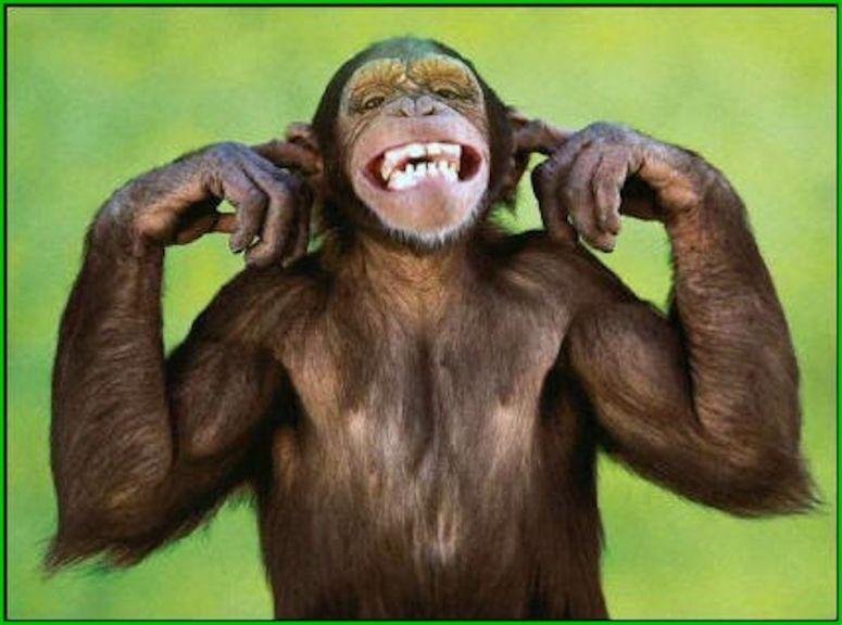 faire le singe